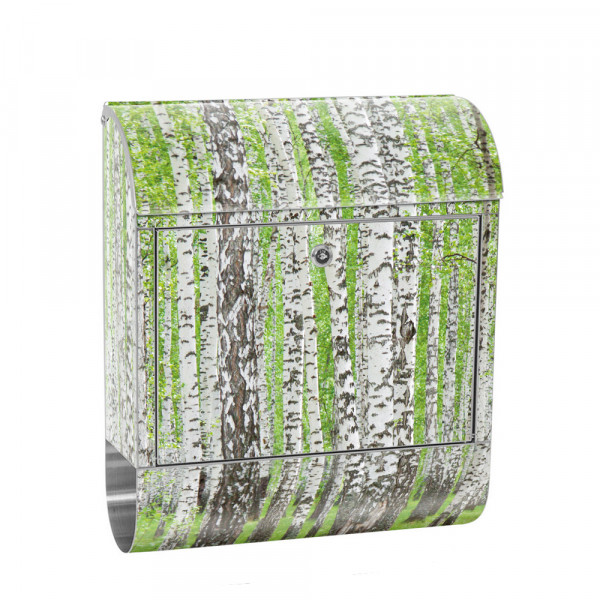 Stainless Steel Letterbox with Newspaper roll & Motif Birch Forest trees Nature | No. 0433