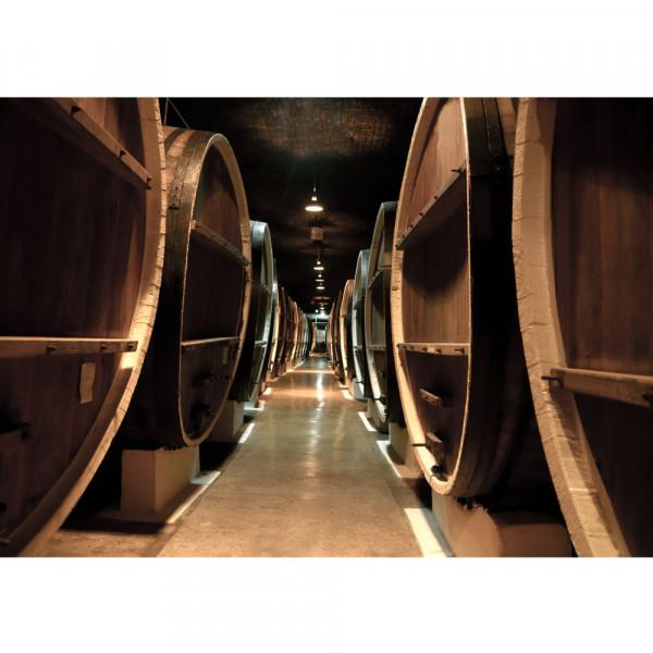 Vlies Fototapete Old Wine BarrelsKunst Tapete Weinkeller Weinfässer Fass Fässer Keller Stollen braun