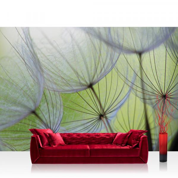 Vlies Fototapete Blumen Tapete Pusteblume Blüte Blume Geflecht Netz Streifen grün