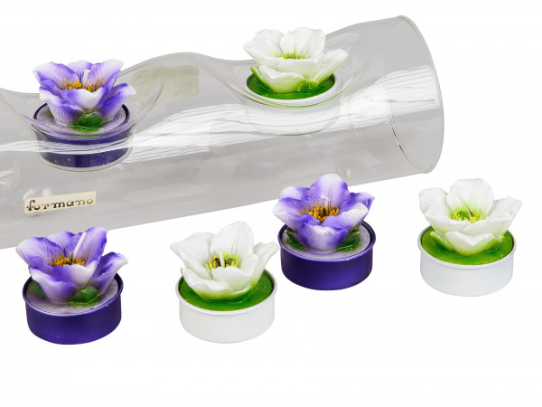 Beautiful Tea Layer Tea light Candles anemones white And purple in 6 pack height 4 cm